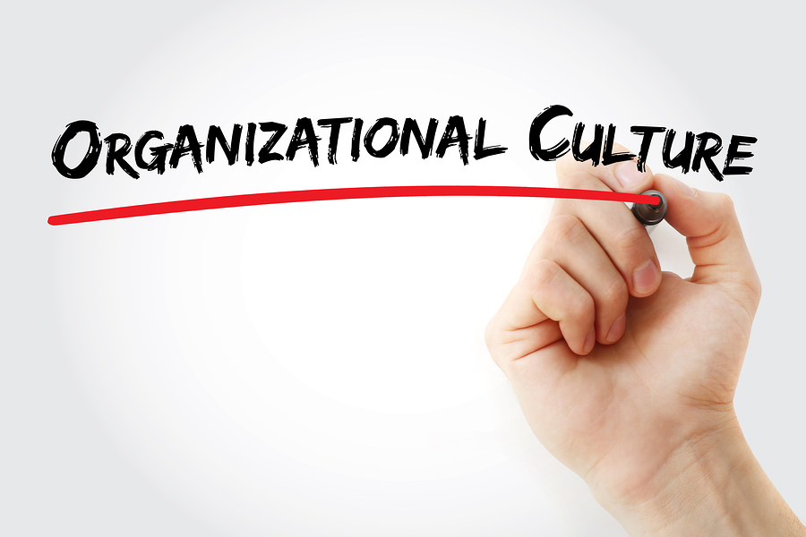 What is All the Buzz About Organizational Culture?