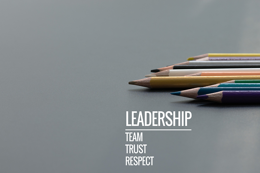 How do values play a role for you as a Positive Impact Leader?